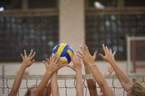 volleyball - 81202959