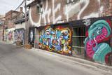 Fototapety : Grafitti lined buildings in Kensington  Market