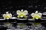 Fototapety Still life with three white orchid with therapy stones
