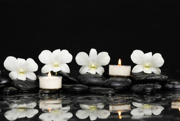 Three White orchid with candle and therapy stones