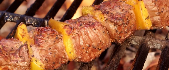 Beef Kebab or Shashlik On The Hot  Flaming Grill