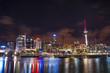 Auckland, New Zealand city at night