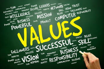 VALUES word cloud, business concept
