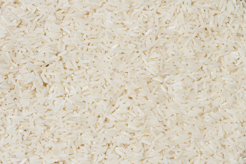 close up shot of the rice background