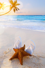 Art flip flops and starfish on a tropical beach