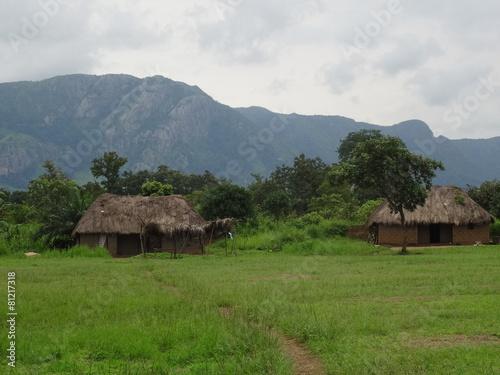 African Village Landscape - 81217318