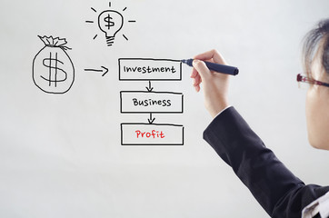 businesswoman drawing diagram for investment