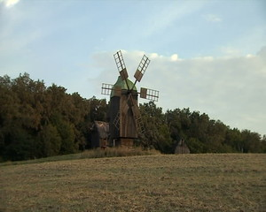 Windmills in the forest