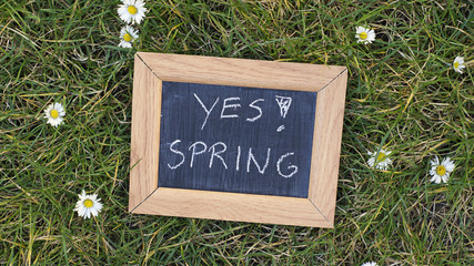 Yes! Spring