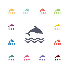 .dolphin flat icons set