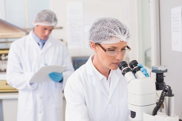 Scientist working attentively with microscope
