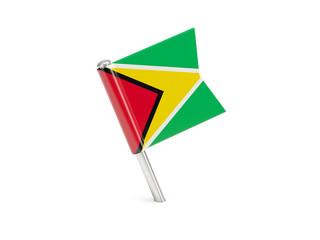 Flag pin of guyana