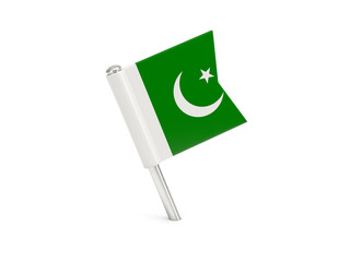 Flag pin of pakistan