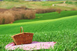 Tuscan picnic on the green spring grass with landscape in the ba - 81233144