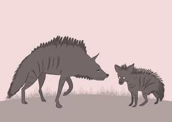 The female hyena with a cub