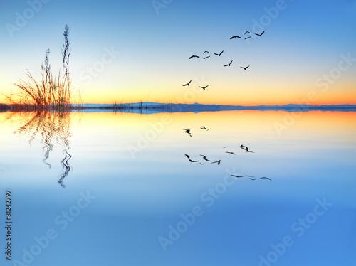 un dia calmado en el lago