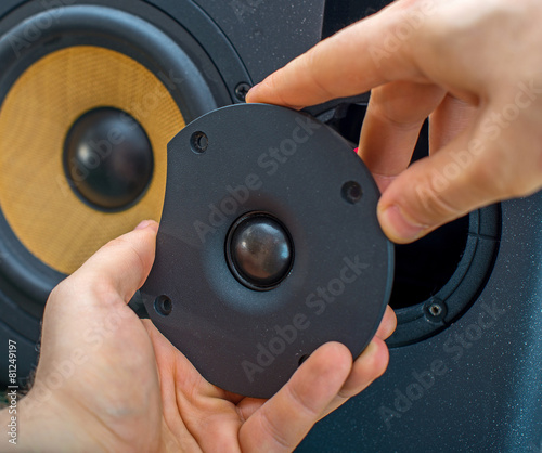 Male hand connecting professional studio monitor speaker. - 81249197