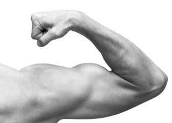 Strong male arm shows biceps. Close-up black and white