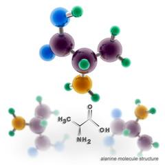 Alanine molecule structure