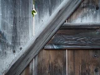 Historische Holztür