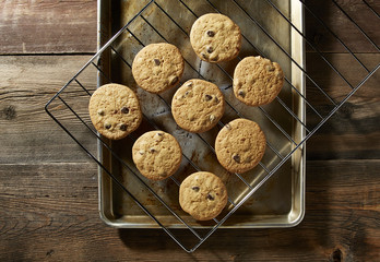 Chocolate Chip Cookies From the Oven
