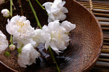 Branch cherry blossom with wooden bowl on mat