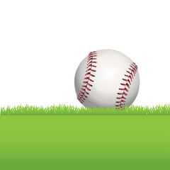 Baseball Sitting on Green Grass Illustration