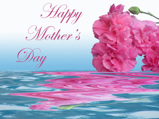 Happy Mother's Day pink carnations with water and reflection