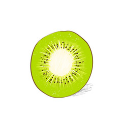 kiwi cut half slice color sketch draw isolated over white