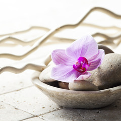zen attitude with mineral cup of stones and flower