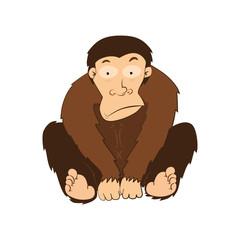Illustration of Monkeys vector