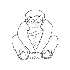 Illustration of Monkeys vector