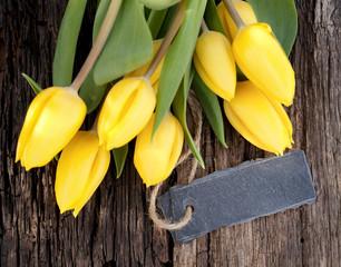 Tulpen, Textfeld