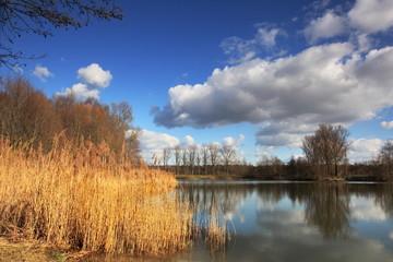 See mit Schilf und Wolkenhimmel