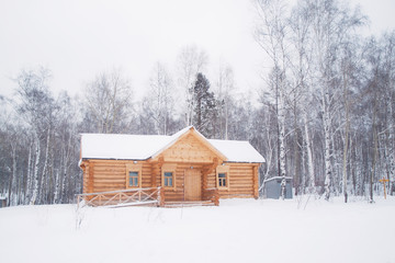 Wooden log house in winter forest