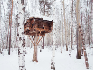 Wooden log house on a tree