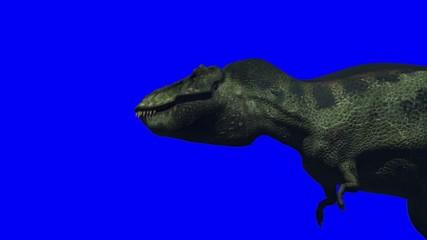 Tyrannosaurus (Blue Screen)