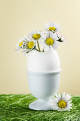 Bouquet of daisies in an eggshell. Shallow depth of field.