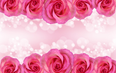 Border of pink rose on romantic background