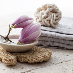magnolia flowers for beauty treatment