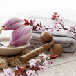 zen decor with Spring flowers for spa treatment - 81282920