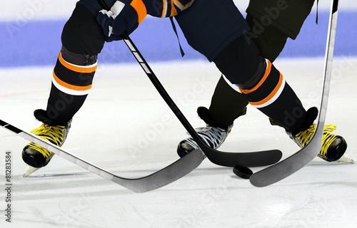 Ice Hockey players on rink - 81283584