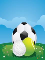 Egg Shaped Sport Balls