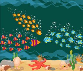 ocean fish. Ocean Underwater World