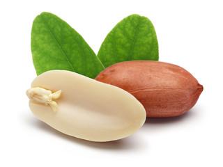 Peanut © mates