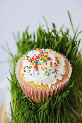 Easter cake with holiday decoration and grass