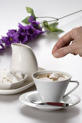 Throwing a sugar cube to the coffee