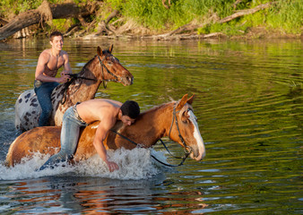 young men bathe horses in the river in the summer morning