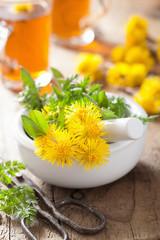 coltsfoot flowers spring herbs in mortar and herbal tea