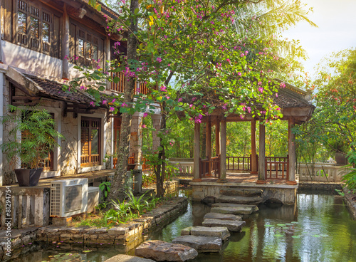 asian tropical garden - 81294754